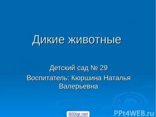 Дикие животные Детский сад № 29 Воспитатель: Кюршина Наталья Валерьевна 900igr.n