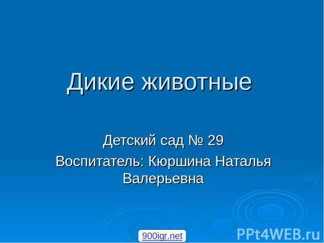 Дикие животные Детский сад № 29 Воспитатель: Кюршина Наталья Валерьевна 900igr.net