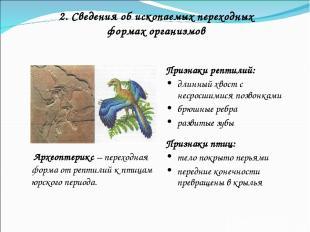 2. Сведения об ископаемых переходных формах организмов Признаки рептилий: длинны