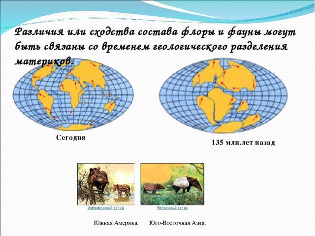 Сегодня 135 млн.лет назад Различия или сходства состава флоры и фауны могут быть связаны со временем геологического разделения материков. Южная Америка. Юго-Восточная Азия.