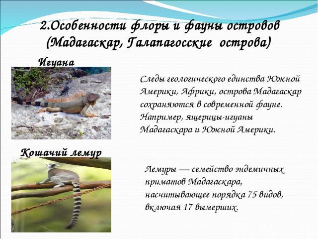 2.Особенности флоры и фауны островов (Мадагаскар, Галапагосские острова) Следы геологического единства Южной Америки, Африки, острова Мадагаскар сохраняются в современной фауне. Например, ящерицы-игуаны Мадагаскара и Южной Америки. Игуана Кошачий ле…