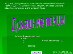 Сель Сельскохозяйственный труд 6 класс Учитель:Михайлова Т.С. 2009 год МС(К)ОУ д