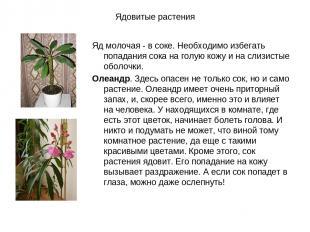 Ядовитые растения Яд молочая - в соке. Необходимо избегать попадания сока на гол