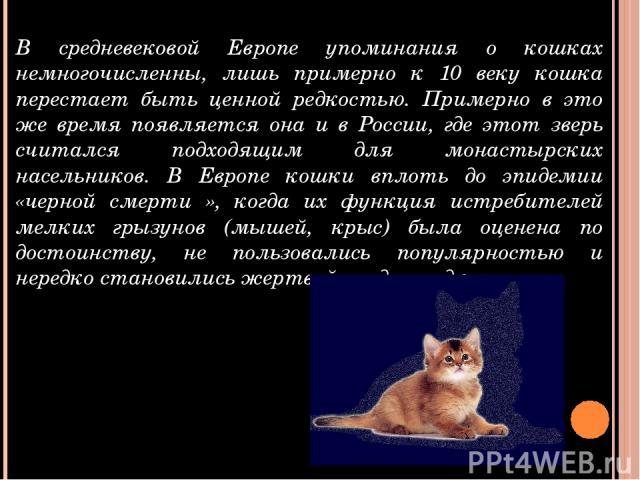 В средневековой Европе упоминания о кошках немногочисленны, лишь примерно к 10 веку кошка перестает быть ценной редкостью. Примерно в это же время появляется она и в России, где этот зверь считался подходящим для монастырских насельников. В Европе к…