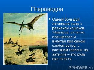 Птеранодон Самый большой летающий ящер с размахом крыльев 16метров, отлично план