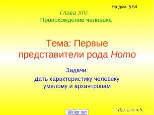 Тема: Первые представители рода Homo Задачи: Дать характеристику человеку умелом