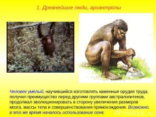 1. Древнейшие люди, архантропы Человек умелый, научившийся изготовлять каменные