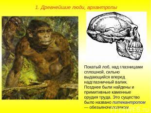 1. Древнейшие люди, архантропы Покатый лоб, над глазницами сплошной, сильно выда