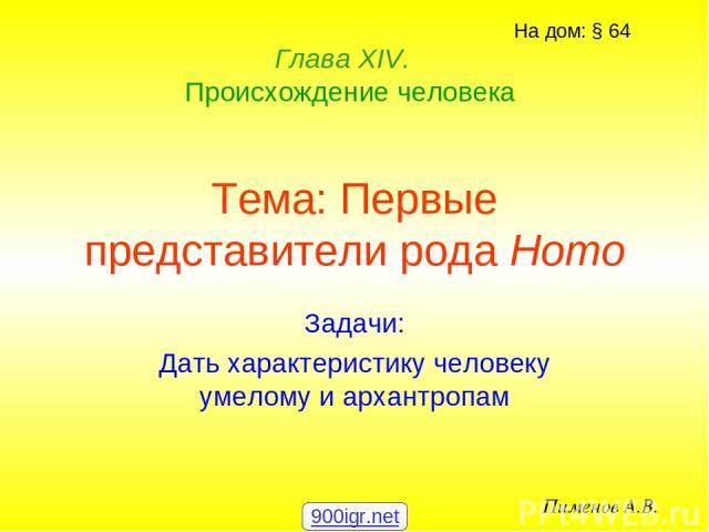 Тема: Первые представители рода Homo Задачи: Дать характеристику человеку умелому и архантропам Глава ХIV. Происхождение человека Пименов А.В. На дом: § 64 900igr.net