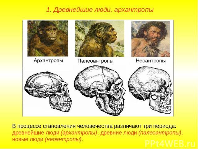 1. Древнейшие люди, архантропы В процессе становления человечества различают три периода: древнейшие люди (архантропы), древние люди (палеоантропы), новые люди (неоантропы).