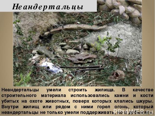 Неандертальцы умели строить жилища. В качестве строительного материала использовались камни и кости убитых на охоте животных, поверх которых клались шкуры. Внутри жилищ или рядом с ними горел огонь, который неандертальцы не только умели поддерживать…