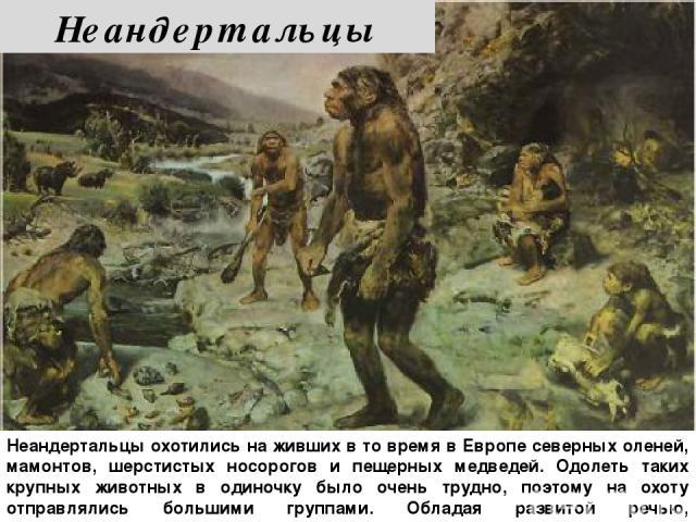 Неандертальцы охотились на живших в то время в Европе северных оленей, мамонтов, шерстистых носорогов и пещерных медведей. Одолеть таких крупных животных в одиночку было очень трудно, поэтому на охоту отправлялись большими группами. Обладая развитой…