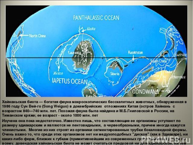Хайнаньская биота— богатая фауна макроскопических бесскелетных животных, обнаруженная в 1986 году Сун Вей-го (Song Weiguo) в докембрийских отложениях Китая (остров Хайнань с возрастом 840—740 млн. лет. Похожая фауна была найдена и М.Б.Гниловской в …