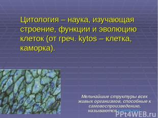 Цитология – наука, изучающая строение, функции и эволюцию клеток (от греч. kytos