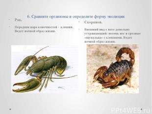 6. Сравните организмы и определите форму эволюции Рак. Передняя пара конечностей