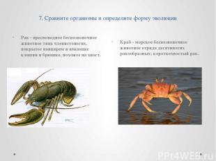 7. Сравните организмы и определите форму эволюции Рак - пресноводное беспозвоноч