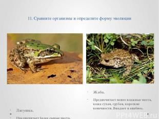 11. Сравните организмы и определите форму эволюции Лягушка. Предпочитает более с