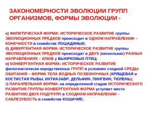 ЗАКОНОМЕРНОСТИ ЭВОЛЮЦИИ ГРУПП ОРГАНИЗМОВ, ФОРМЫ ЭВОЛЮЦИИ - а) ФИЛИТИЧЕСКАЯ ФОРМА
