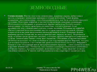 * ученица 7б класса школы №5 Вишневецкая Валерия * ЗЕМНОВОДНЫЕ Специализация. Мн