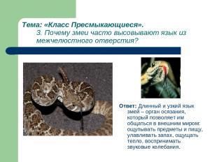 Тема: «Класс Пресмыкающиеся». 3. Почему змеи часто высовывают язык из межчелюстн