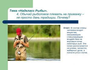 Тема «Надкласс Рыбы». 4. Обычай рыболовов плевать на приманку – не просто дань т