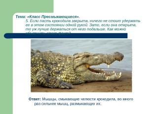 Тема: «Класс Пресмыкающиеся». 5. Если пасть крокодила закрыта, ничего не стоит у