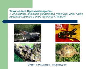 Тема: «Класс Пресмыкающиеся». 1. Аллигатор, анаконда, саламандра, черепаха, удав