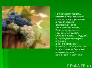 Производство овощей, плодов иягод вбольшей степени сконцентрировано вюжных ра