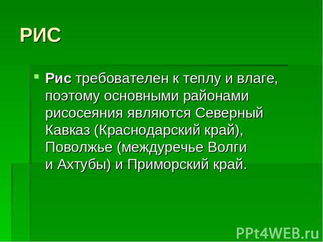 РИС Рис требователен ктеплу ивлаге, поэтому основными районами рисосеяния являются Северный Кавказ (Краснодарский край), Поволжье (междуречье Волги иАхтубы) иПриморский край.