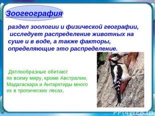 Зоогеография раздел зоологии и физической географии, исследует распределение жив