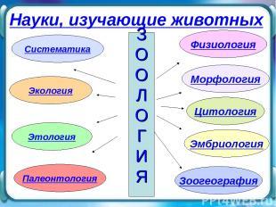 Морфология Физиология Цитология Систематика Экология Палеонтология Эмбриология З