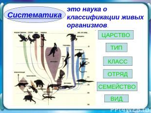 Систематика это наука о классификации живых организмов. ВИД ЦАРСТВО ТИП КЛАСС ОТ