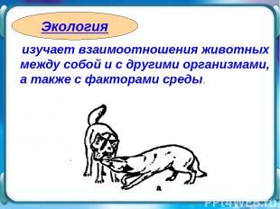 изучает взаимоотношения животных между собой и с другими организмами, а также с