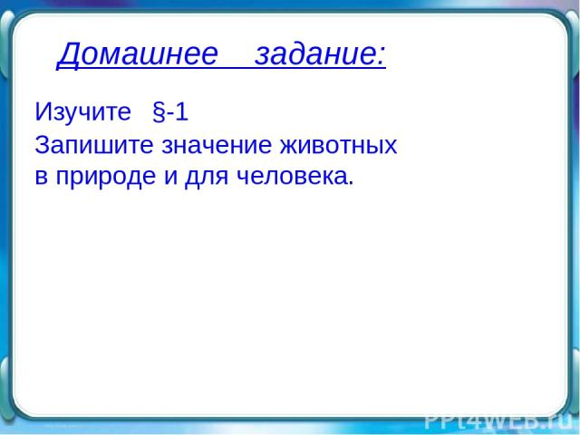 Домашнее задание: Изучите §-1 Запишите значение животных в природе и для человека.