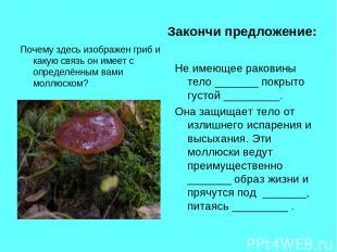 Закончи предложение: Почему здесь изображен гриб и какую связь он имеет с опреде