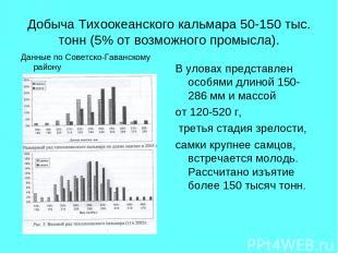 Добыча Тихоокеанского кальмара 50-150 тыс. тонн (5% от возможного промысла). Дан