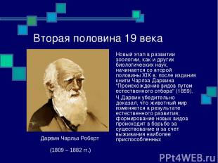 Вторая половина 19 века Новый этап в развитии зоологии, как и других биологическ