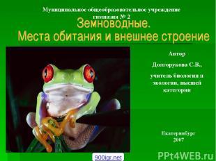 Автор Долгорукова С.В., учитель биологии и экологии, высшей категории Екатеринбу