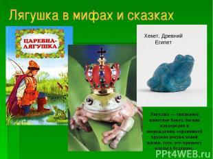 Лягушка — священное животное Хекет, богини плодородия и возрождения, охранявшей