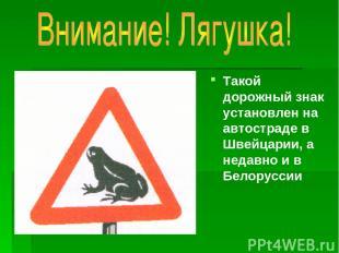 Такой дорожный знак установлен на автостраде в Швейцарии, а недавно и в Белорусс