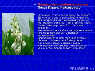 Ландыш был любимым цветкомПетра Ильича Чайковского. О ландыш, отчего так радуеш