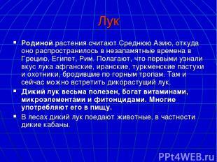 Лук Родинойрастения считают Среднюю Азию, откуда оно распространилось в незапам