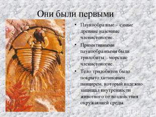 Они были первыми Паукообразные – самые древние наземные членистоногие. Примитивн