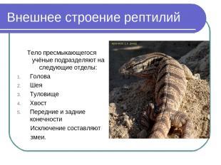 Внешнее строение рептилий Тело пресмыкающегося учёные подразделяют на следующие
