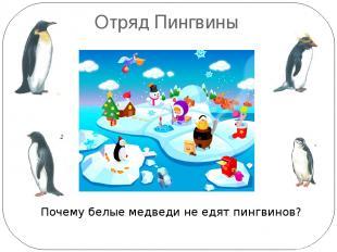 Отряд Пингвины Почему белые медведи не едят пингвинов? Пингвины живут только в ю