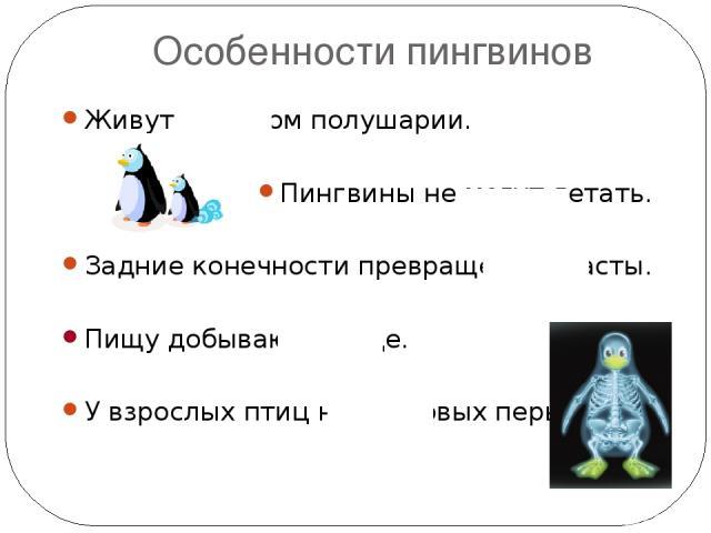 Особенности пингвинов Живут в южном полушарии. Пингвины не могут летать. Задние конечности превращены в ласты. Пищу добывают в воде. У взрослых птиц нет пуховых перьев. ??? ??? ??? ??? ???