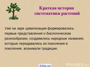 Краткая история систематики растений Уже на заре цивилизации формировались первы