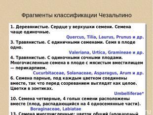 Фрагменты классификации Чезальпино 1. Деревянистые. Сердце у верхушки семени. Се