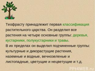 Теофрасту принадлежит первая классификация растительного царства. Он разделил вс