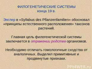 ФИЛОГЕНЕТИЧЕСКИЕ СИСТЕМЫ конца 19 в. Энглер в «Syllabus des Pflanzenfamilien» об